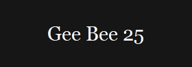Gee Bee 25